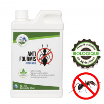 anti fourmi naturel efficace
