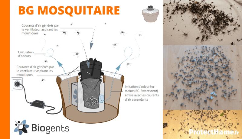 piege anti moustique exterieur biogents mosquitaire