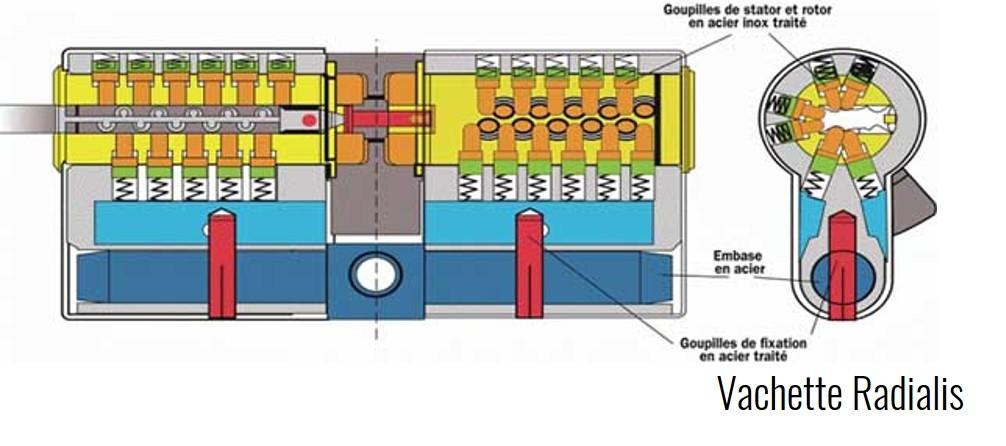 cylindre-vachette-radialis